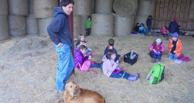 Schweine, Esel, Pferde & Hund