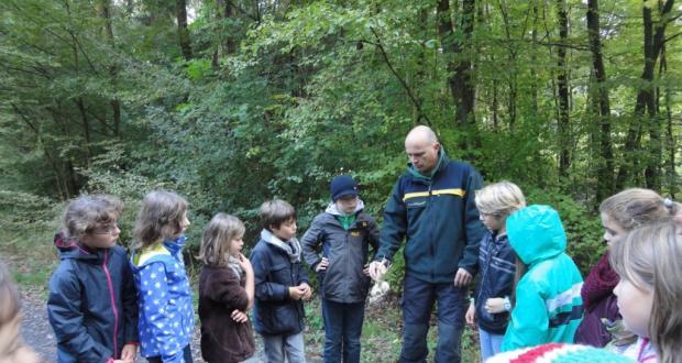 Unser Tag im Wald